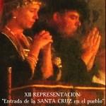 cartel-representacion-20141